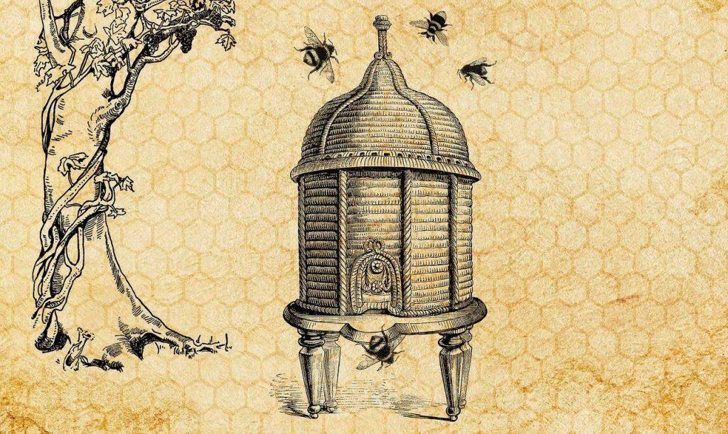 beehive, bee, vintage-3434143.jpg